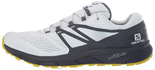Salomon Sense Ride 2 illusion bluenavy blazercitronelle (Herren)